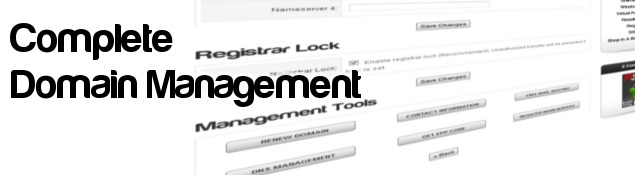 Domain Registration and Management Tools