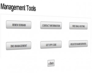 domain management interface